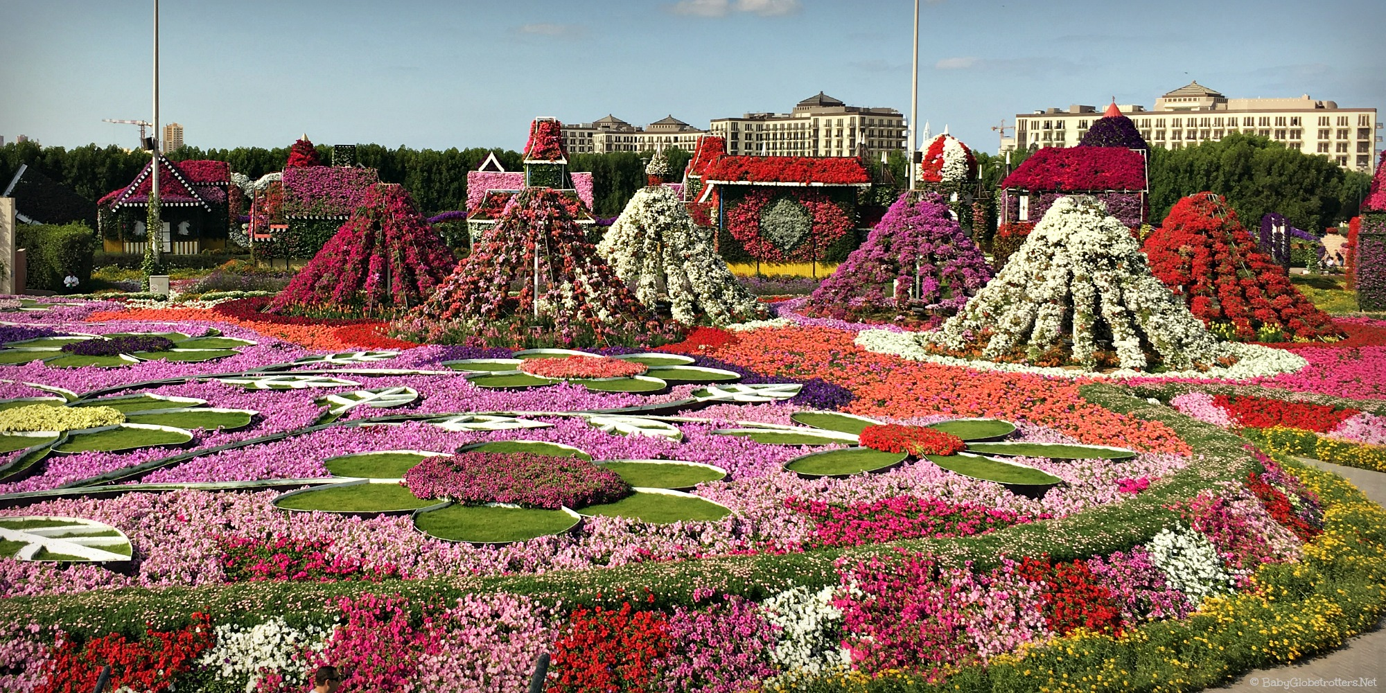 50 million blooms to wow visitors at dubai miracle garden - Dubai Miracle Garden