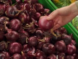 Bahrain: Onion Prices Increased by 100% In 10 Days